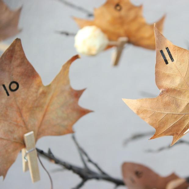 calendario adviento hojas
