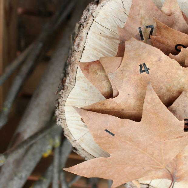 calendario de adviento hojas